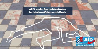 Neckar-Odenwald: erschreckende Kriminalstatistik 2018
