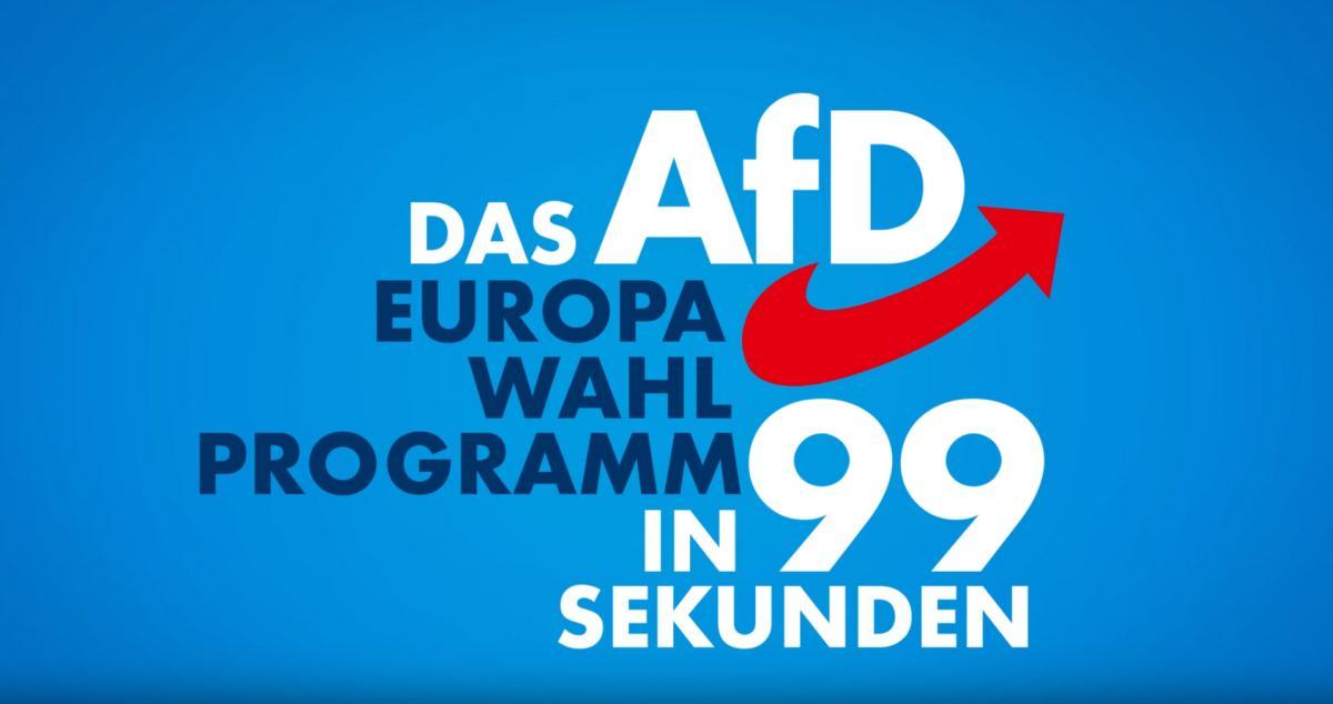 Das AfD EU-Programm in 99 Sekunden