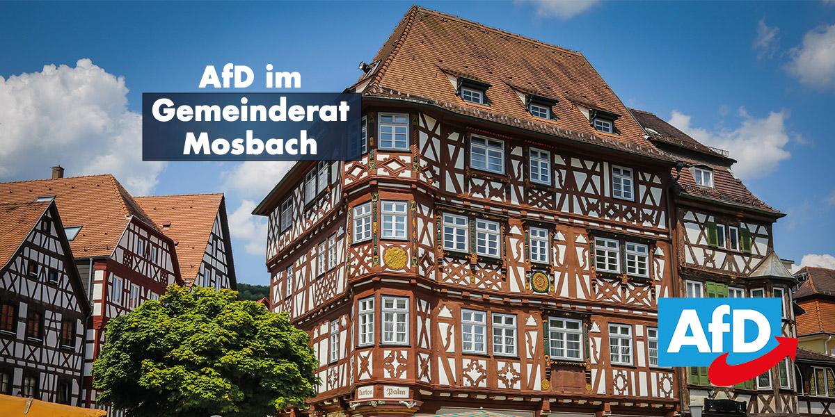 Gemeinderat Mosbach: Was will die AfD erreichen?