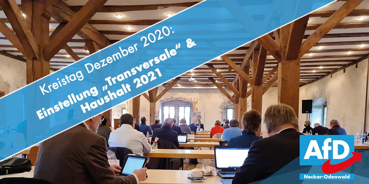 Transversale und Haushalt 2021